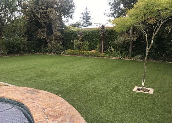 Larger Astro Turf Garden