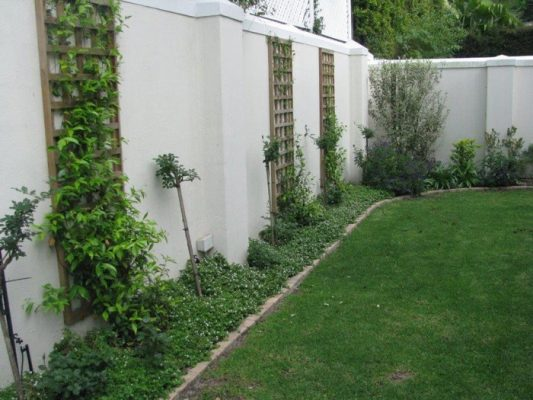 Garden Bed Trellis
