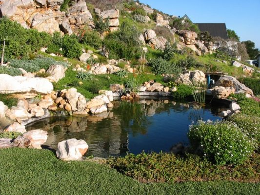 Natural Pool Water Feature